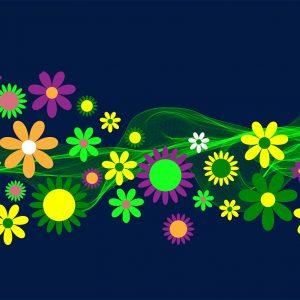 flower-power-1638753_1280