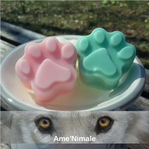 Fondants-Solidaires-Ame-Nimale