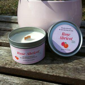 Rose Abricot P 1 R